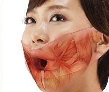 muscle-du-visage